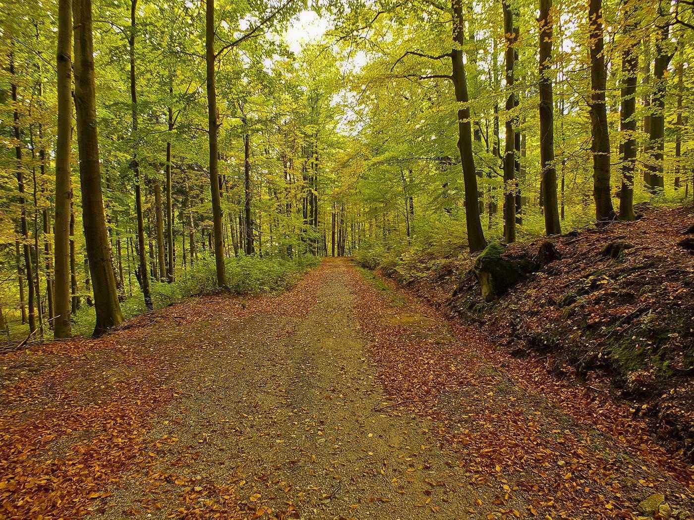 Jesień w Karkonszach